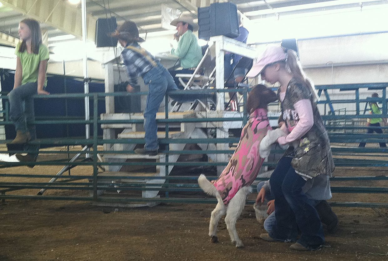 Peyton Parker, 8, plays with her goat before the start of the Dress Your Animal Contest at the 2017 Routt County Fair.