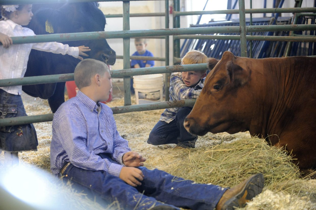 Emmitt Meyring, right, visits with Sam Shaffer, whose steer was the reserve grand champion for the Junior Livestock Sale at the Routt County Fairgrounds.