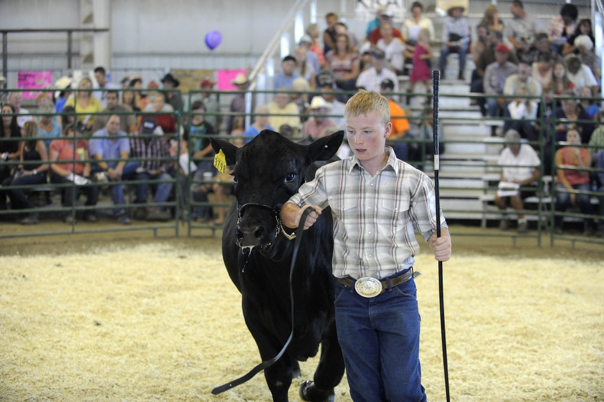 Tyler Boyer shows his steer during Saturday's Junior Livestock Sale at the Routt County Fairgrounds.