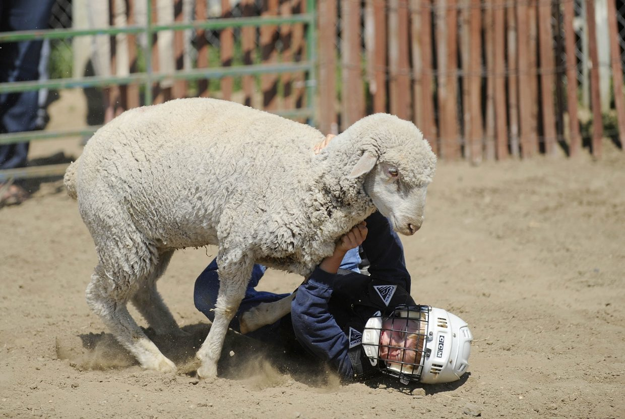 Noah Lind, 8, of Hayden, competes in the mutton bustin' competition Saturday at the Routt County Fair.