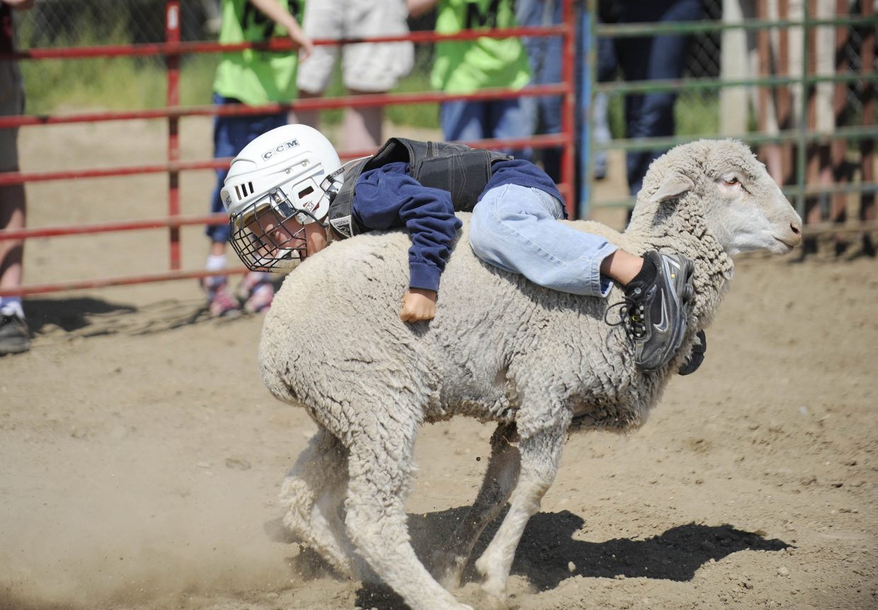 Cy Reistad, 8, of Steamboat Springs, competes in the mutton bustin' competition Saturday at the Routt County Fair.