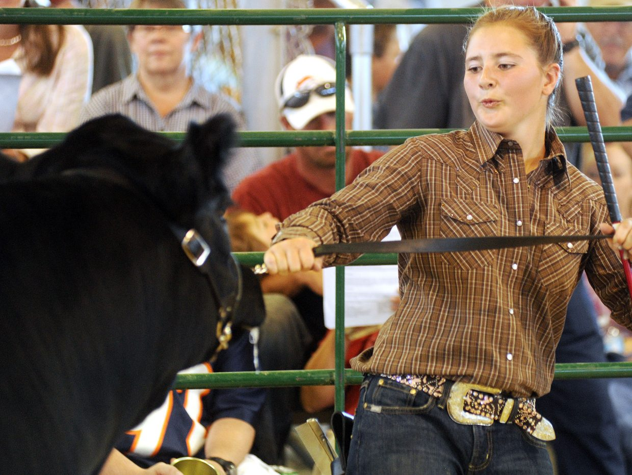 Taylore Schalnus, 12, gives TNT a tug Saturday during the market auction at the Routt County Fair in Hayden.