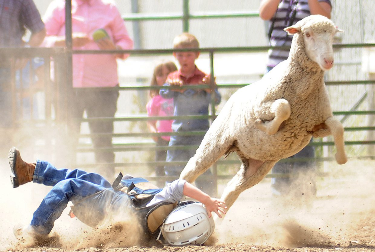 Kalob More couldn't avoid a roll in the dirt while competiting in the mutton busting at the Routt County Fair in Hayden.