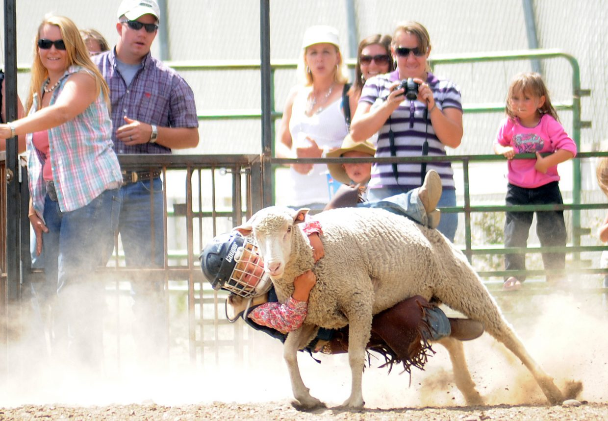 Bailey Iacovetto clings on during her mutton bustin' ride at the Routt County Fair in Hayden on Sunday.