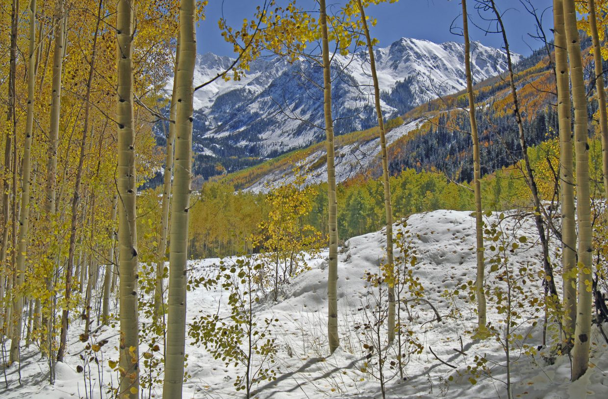 Aspens frame the fresh snow near Ashcroft and the distant peaks of the McArthur Mountains.