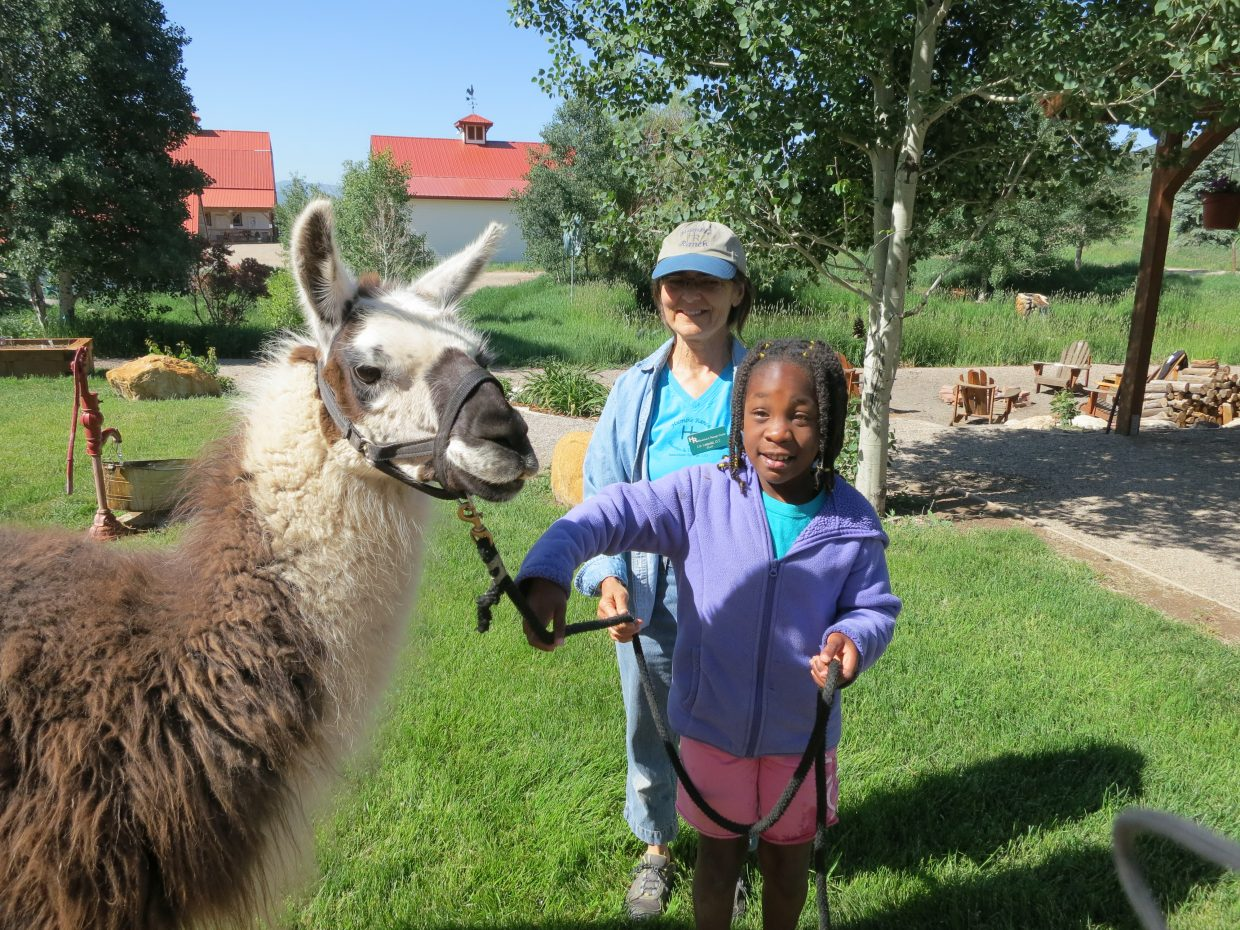 Neavaeh Smith leads a llama at Humble Ranch Education and Therapy Center as Liz Leipold, an occupational therapist, looks on.