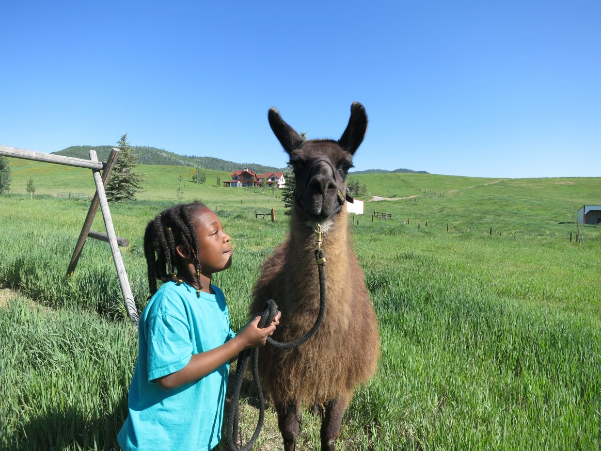 Nevaeh Smith poses with one of the llamas at Humble Ranch Education and Therapy Center.