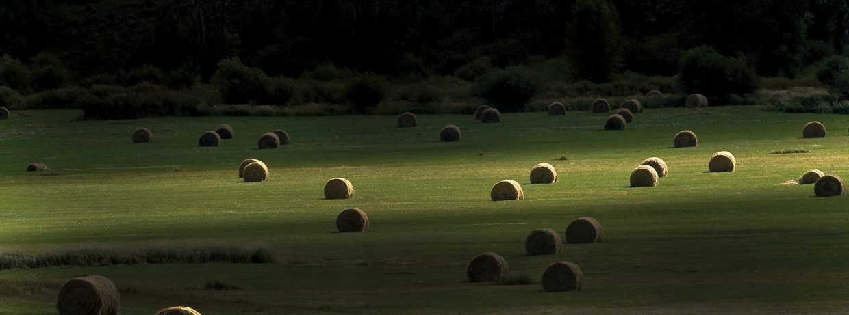 Streaks of sunlight kiss a pasture on the Green Creek Ranch in Pleasant Valley after another successful haying season.
