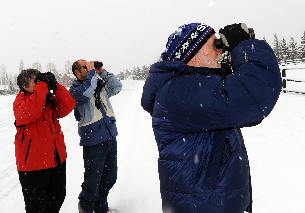David Moulton, right, Tresa Moulton and Bruce Dean examine a bird in a tree on the far end of a meadow.