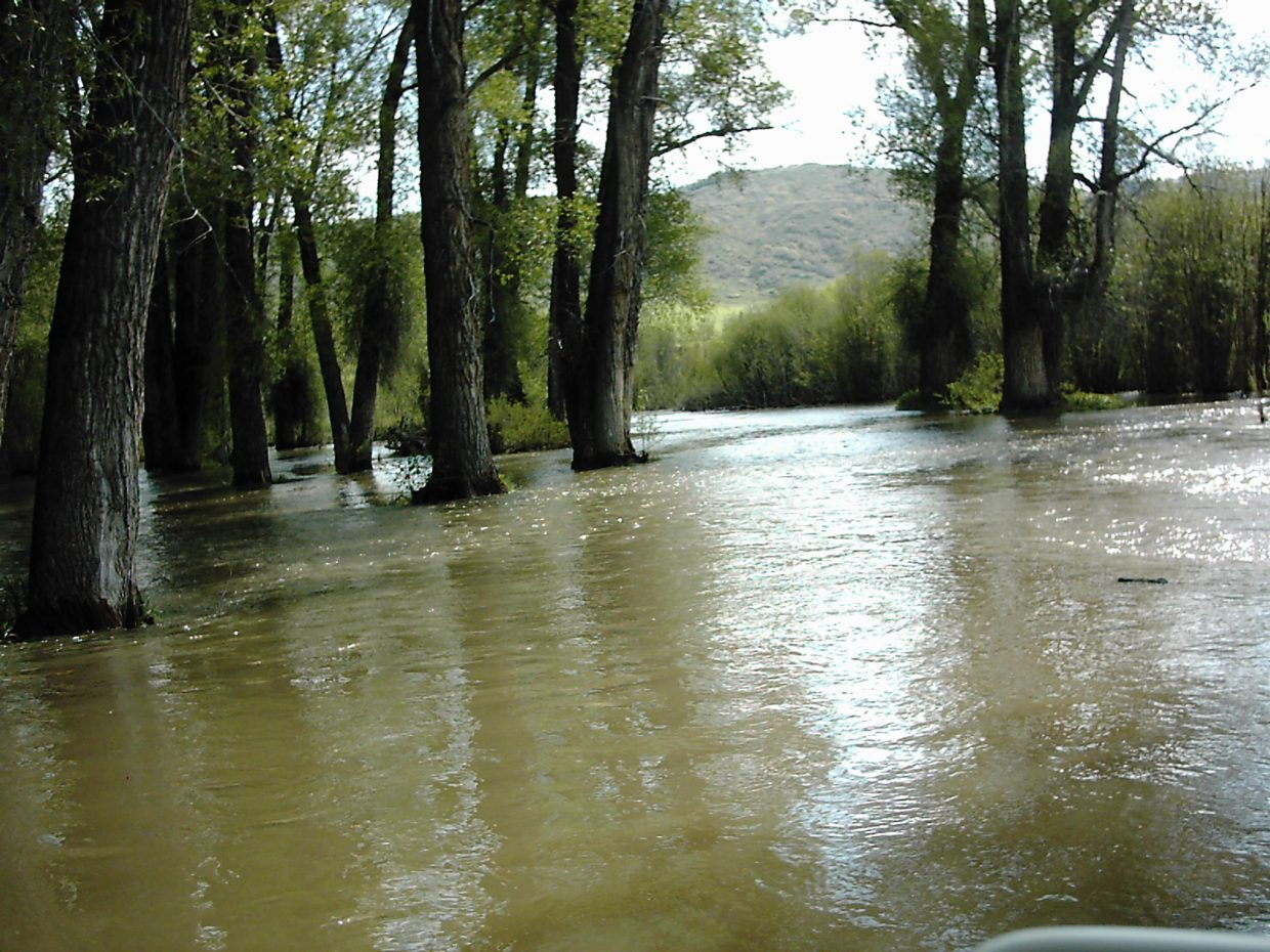 High water in Routt County.
