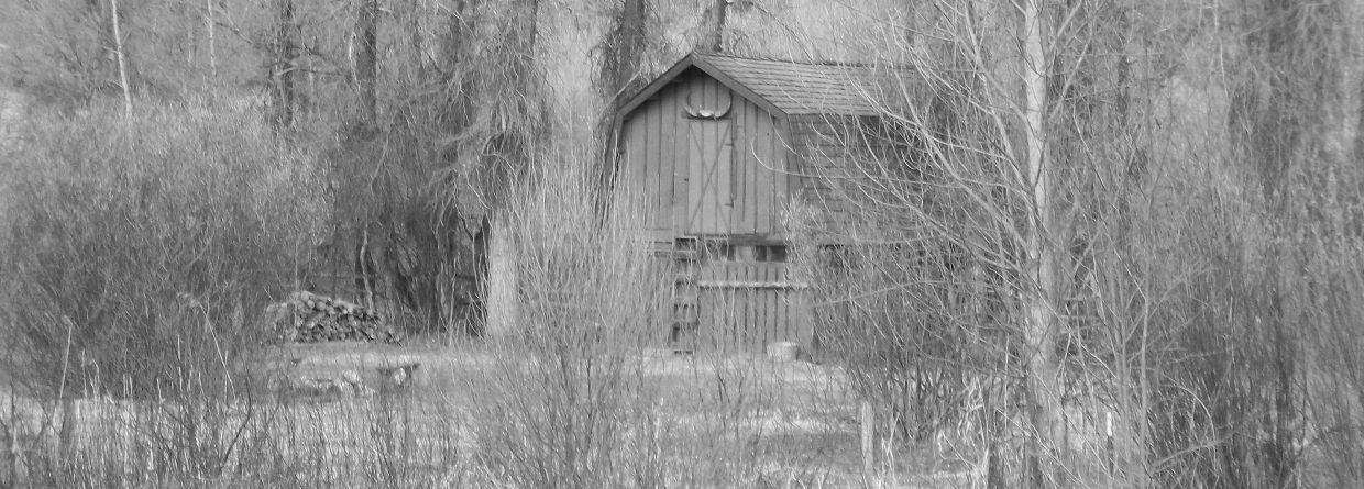 The Island Barn. Submitted by: Bill Dorr