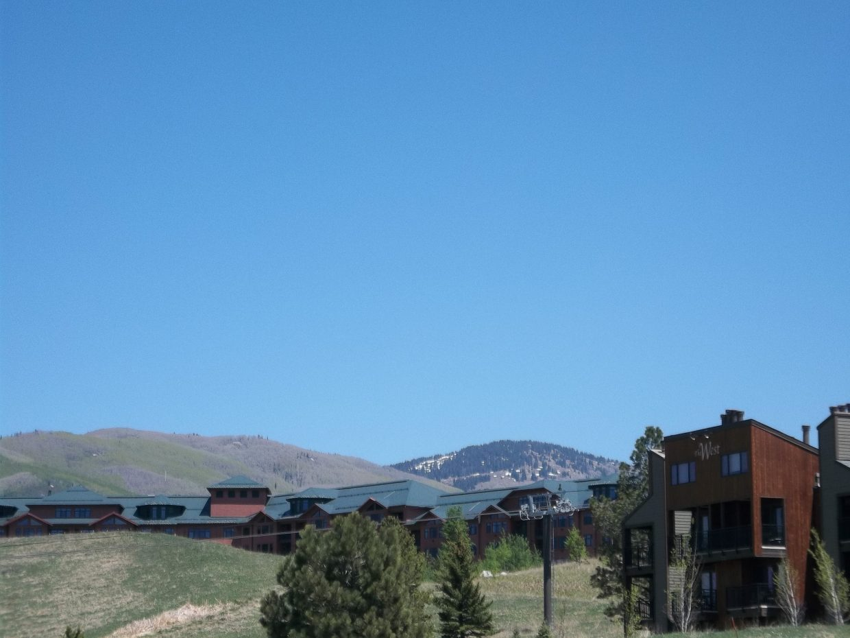 Fresh aspen buds and hardly any snow at the ski area. Submitted by: Bill Dorr