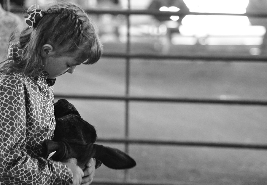 A young competitor waits for her class by the entry gate. Submitted by: Wendy Lind