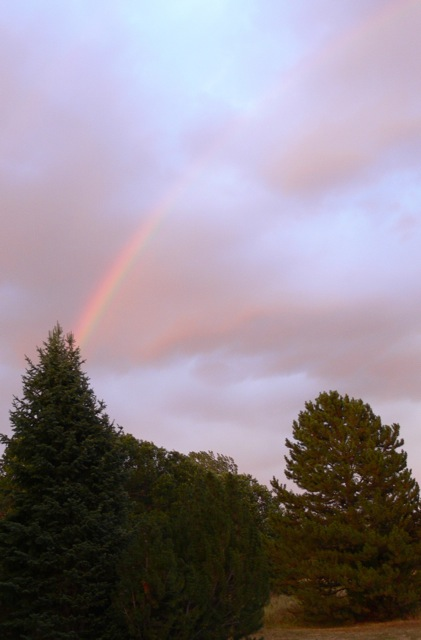 Rainbow from Anglers Drive. Submitted by: Susan Frederick