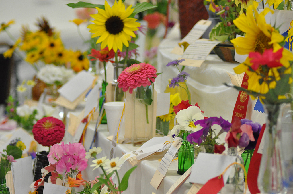 Entries for the flower arrangement competition. Submitted by: Wendy Lind