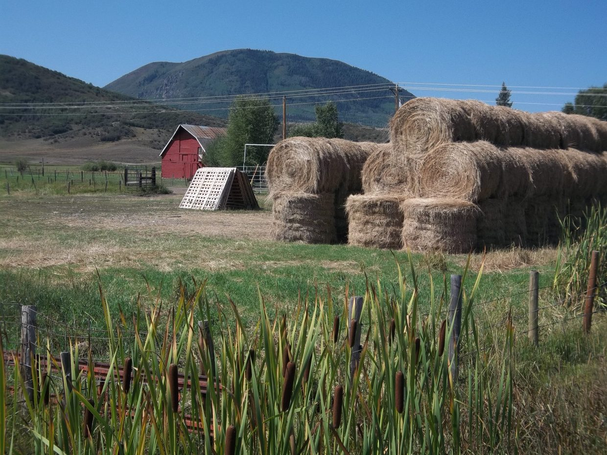 Bar Lazy L Barn. Dean Look's haystack. The cattails are changing colors. Another day in paradise. Submitted by: Bill Dorr