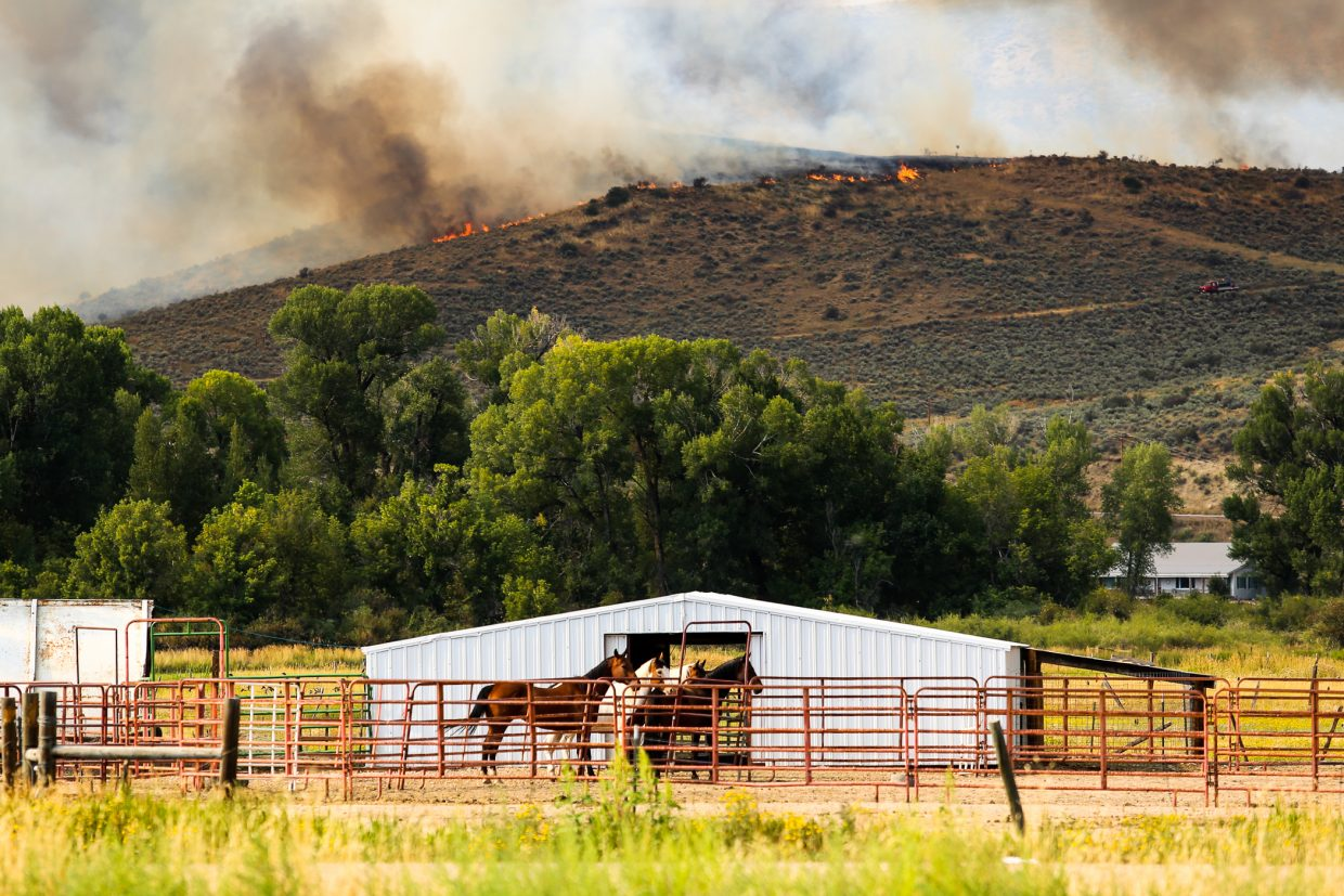 Eleven horses from the Cog Fire evacuation area have been moved to the Routt County Fairgrounds in Hayden.
