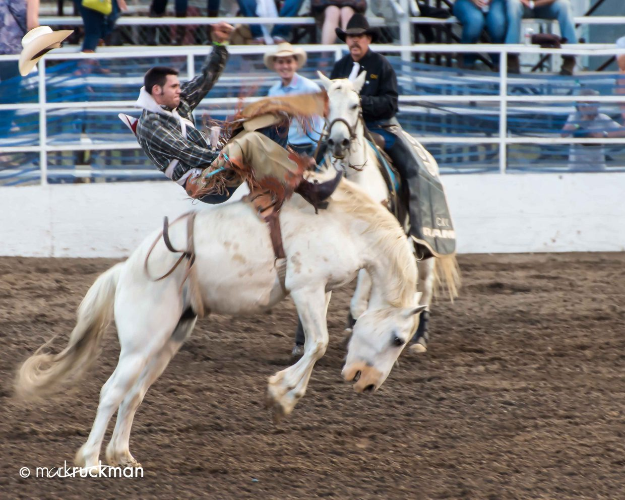 Saturday night fun at the Steamboat Springs rodeo. Submitted by: Mark Ruckman