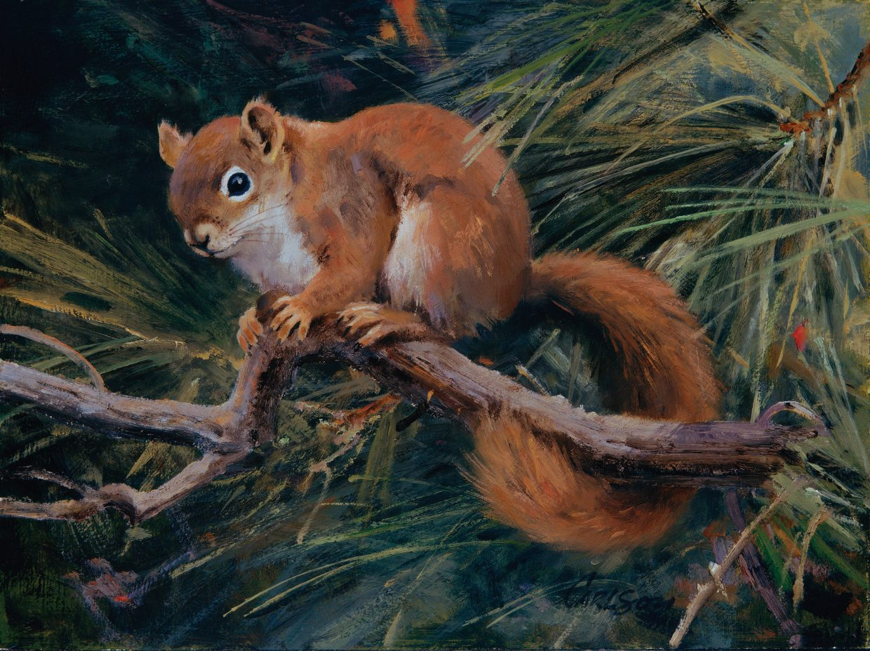 A painting of a red squirrel by wildlife artist Ken Carlson.
