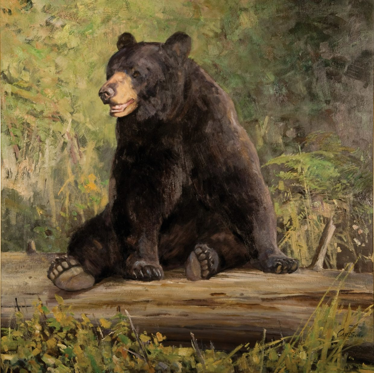 In some paintings Ken Carlson abstracts the landscape, making the wildlife subject stand out. That technique is seen in this Carlson painting of a black bear.