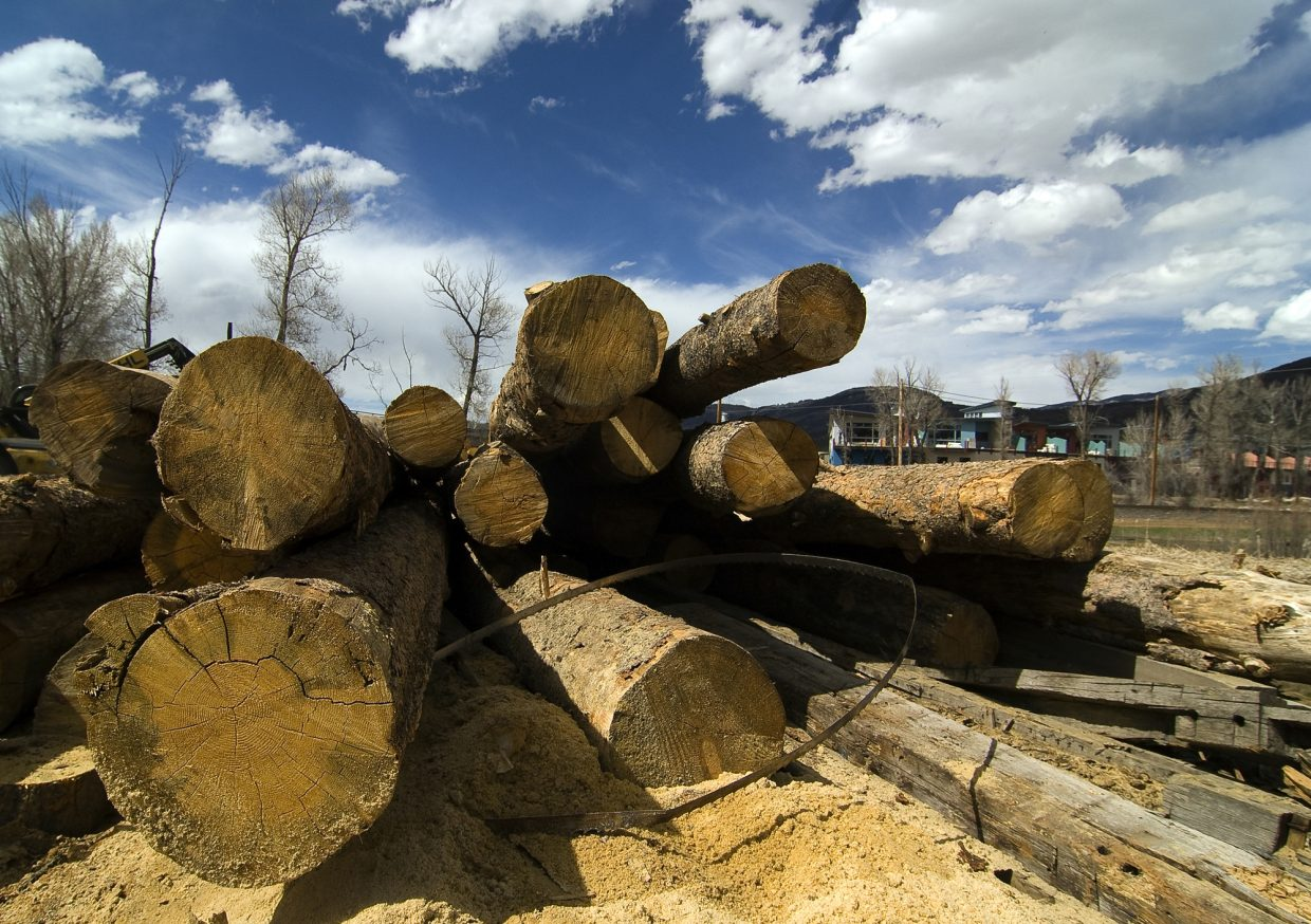 Logs at J Bonn Wood Products wait to be processed. The small mill, located in Steamboat Springs, uses beetle-killed trees from the Steamboat area to make a number of different products used in building homes.