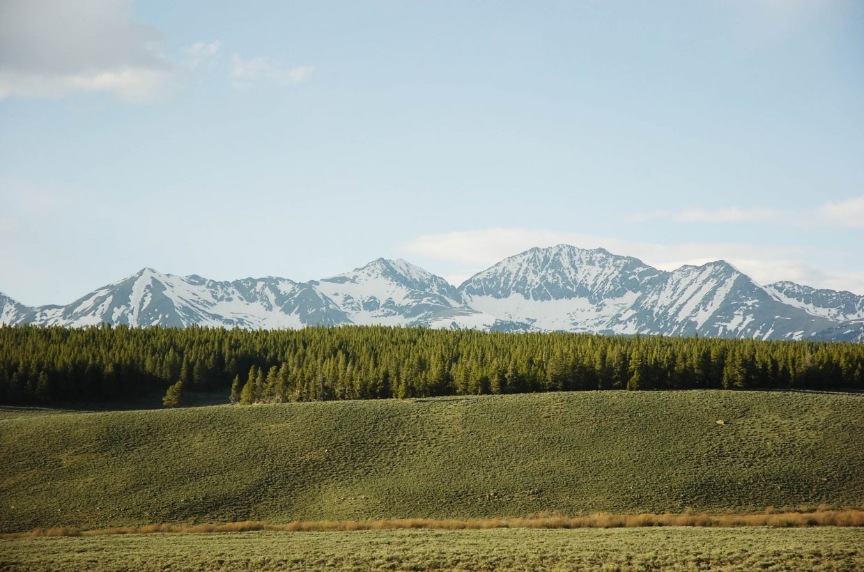 Roy Mask, a Gunnison-based entomologist with the U.S. Forest Service, said rising temperatures could spell trouble for the Gunnison National Forest