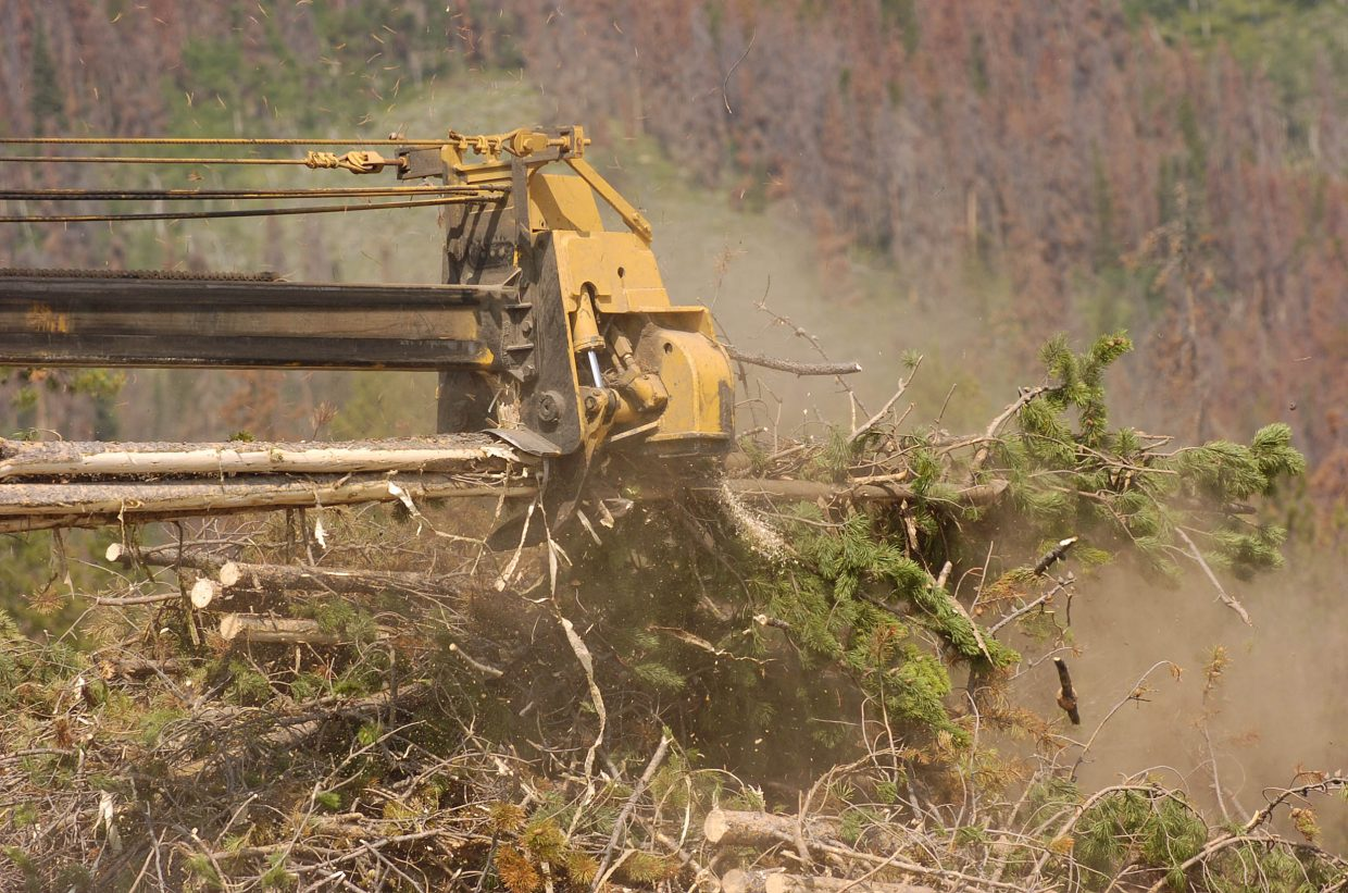 A machine cuts the limbs off lodgepole pines at Snow Mountain Ranch near Granby.