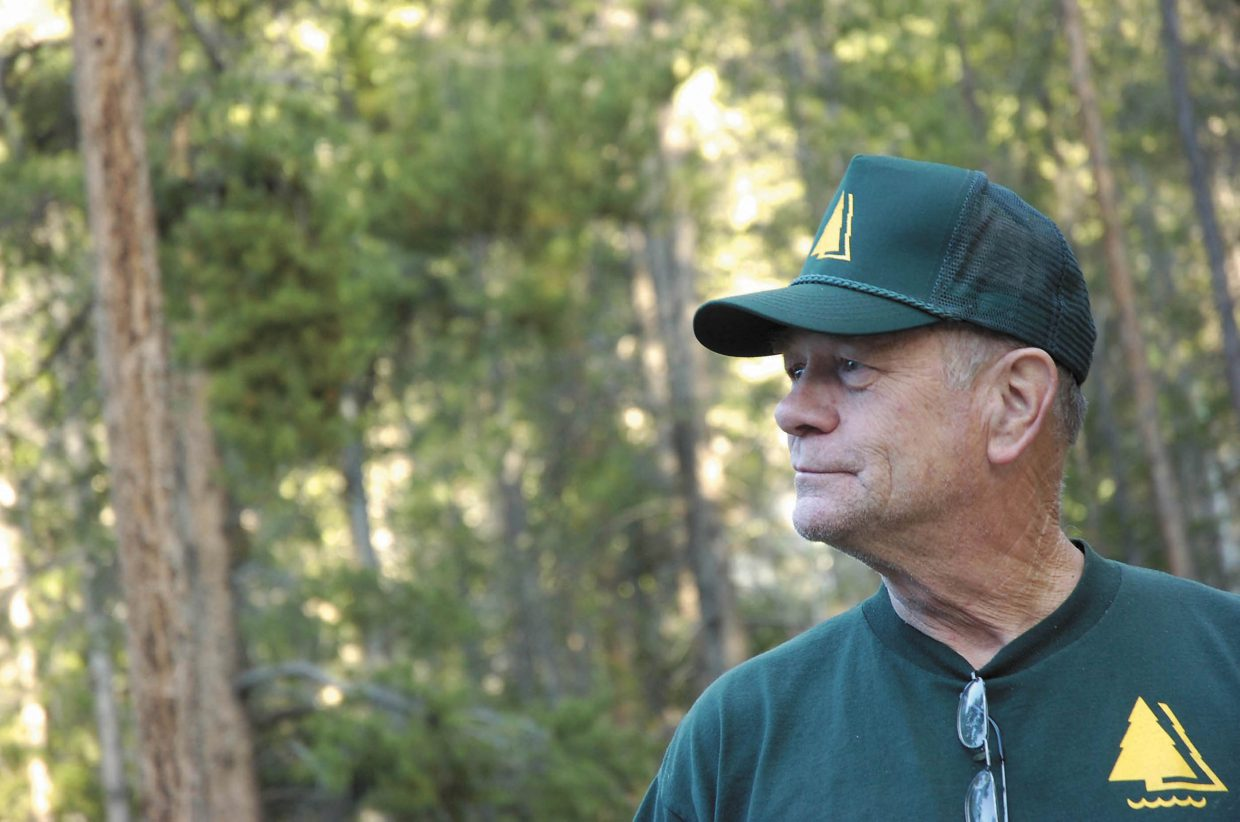 Lodgepole Campground host Steve Gilbreath gazes at the pines around the grounds.