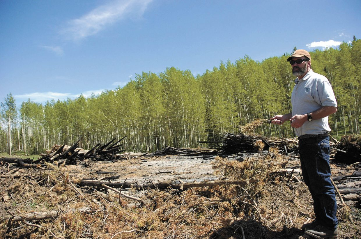 John Twitchell, a Steamboat Springs-based forester with the Colorado State Forest Service, stands near a burn pile in the Red Creek subdivision in North Routt County.