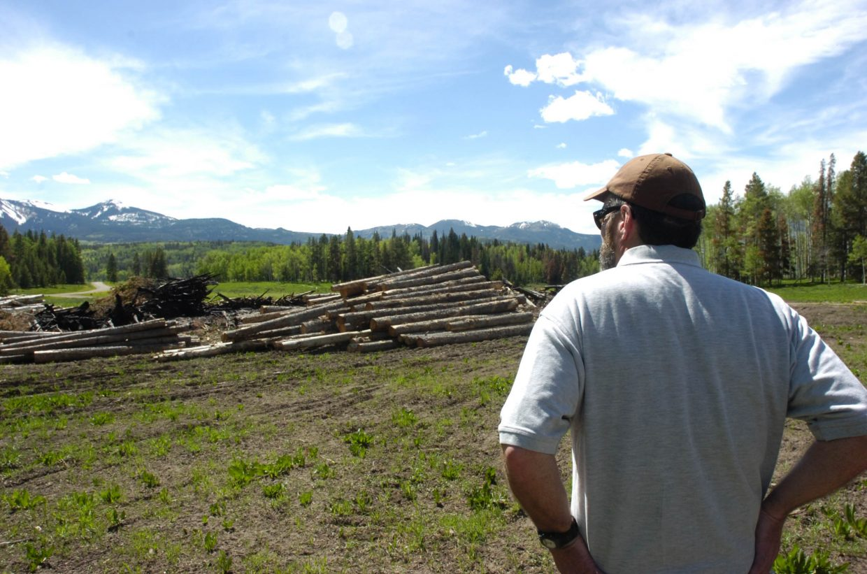 John Twitchell, a Steamboat Springs-based forester with the Colorado State Forest Service, looks at the burn piles in the Red Creek subdivision in North Routt County. Twitchell advised residents in the subdivision about how to deal with beetle infestation.