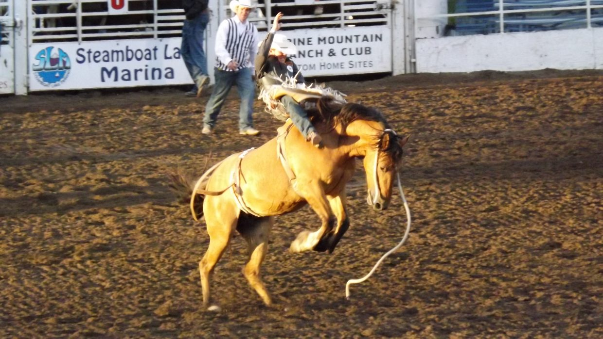 Bronco riding at Steamboat Springs Rodeo on June 22. Submitted by: Dana Squier