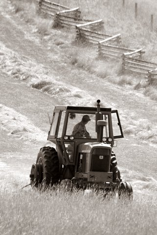 This is what I call a Yampa Valley Hay Day. Submitted by: Doug Meinel