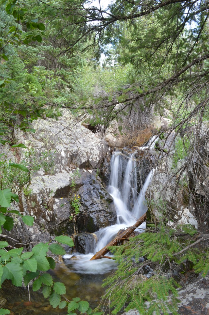 Tranquil water falling in Fish Creek Canyon. Submitted by: Glenn Little II