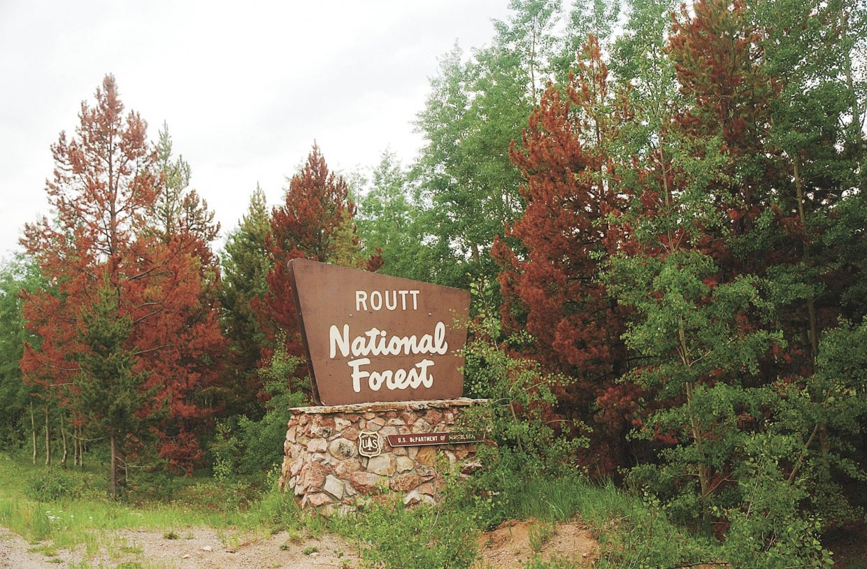 The sign marking the beginning of the Routt National Forest on Gore Pass is surrounded with beetle-killed trees.
