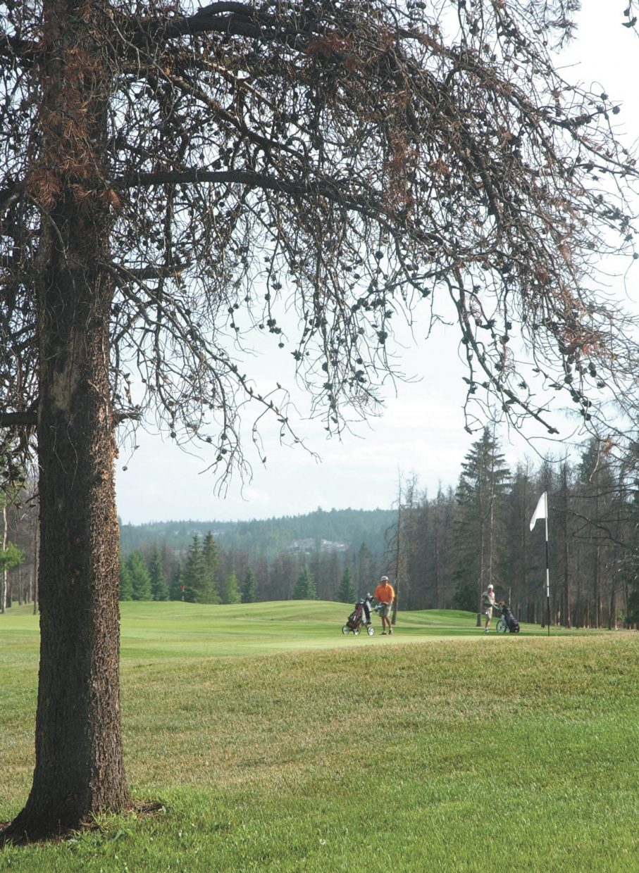 Golfers finish up their round at the Prince George Golf and Curling Club in British Columbia, Canada.