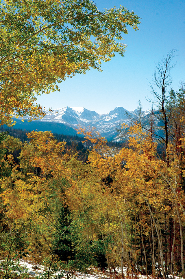 A window through turning Aspens to the south viewing Lost Ranger Peak in the Mount Zirkel Wilderness.