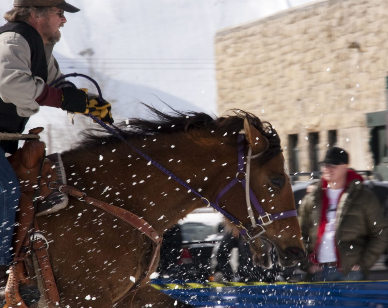 Flying Snow. Horse and Rider fly down Lincoln Avenue during the skijoring event during the 99th annual Winter Carnival. Submitted by: Ginger Sims