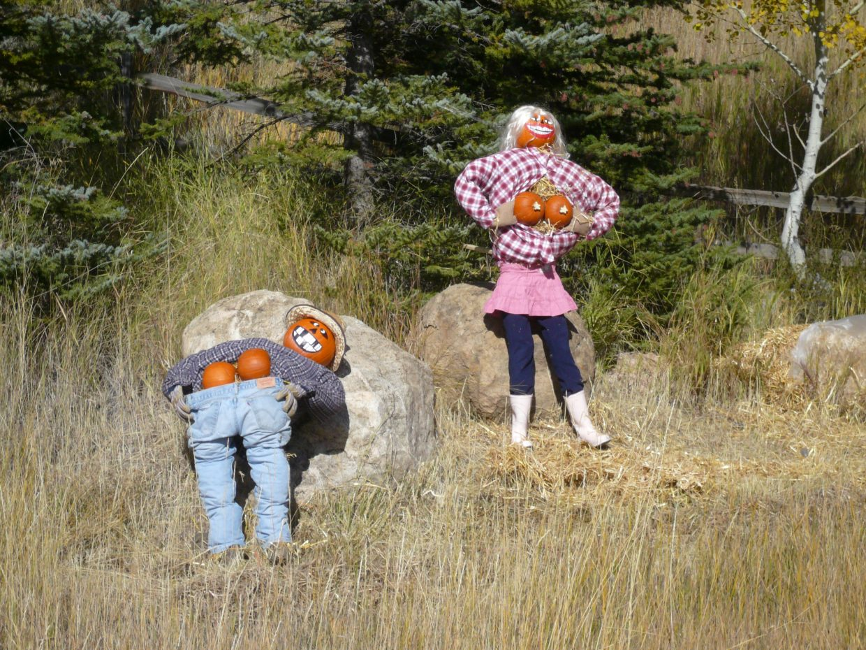 These were made by someone very clever on the way up Mount Werner Road.