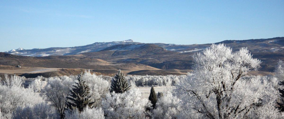 Scenic shot of Hayden Valley. Submitted by: Festus Hagins