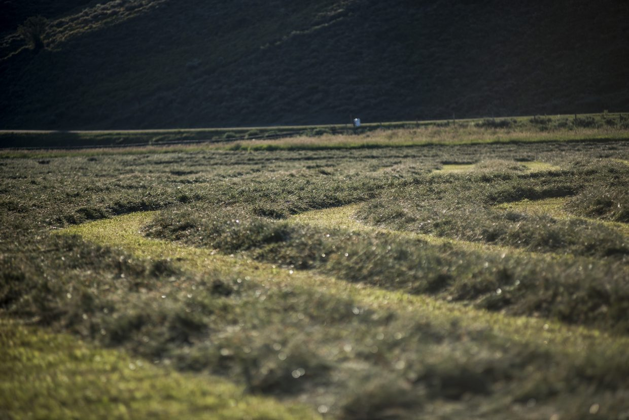 Whole lotta haying going on. The recent dry, hot weather has been ideal for Routt County hay ranches. Submitted by: Bas Wolf