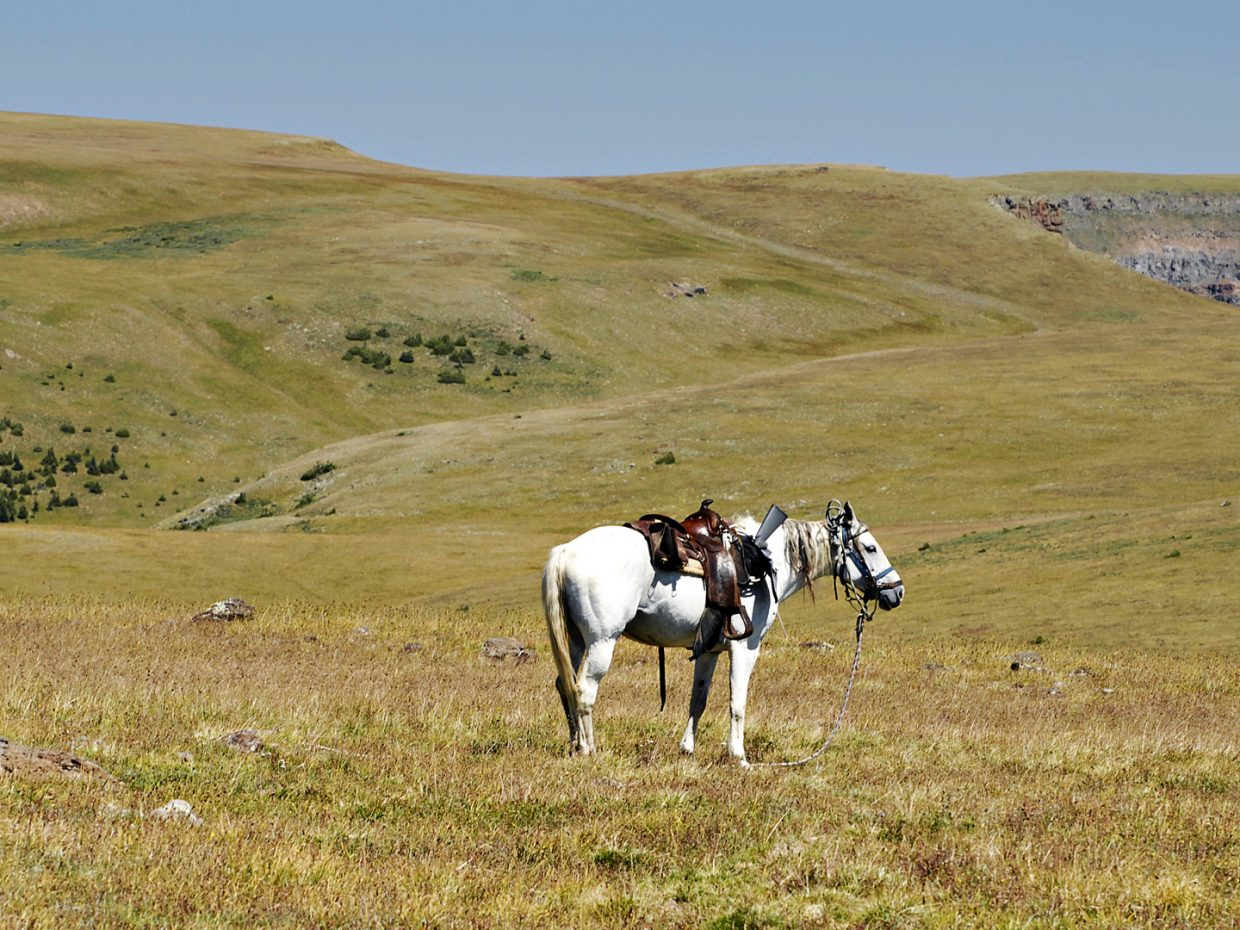 Near the Devil's Causeway at Flat Tops Wilderness Area. Submitted by: Jeff Hall