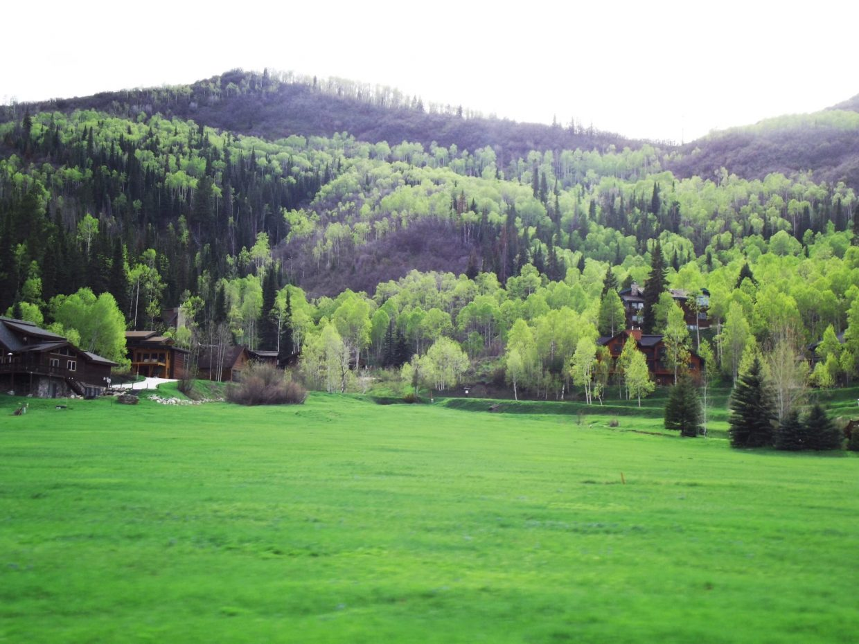 Our beautiful, lush, green Steamboat Springs. Submitted by: Morgan Ingram