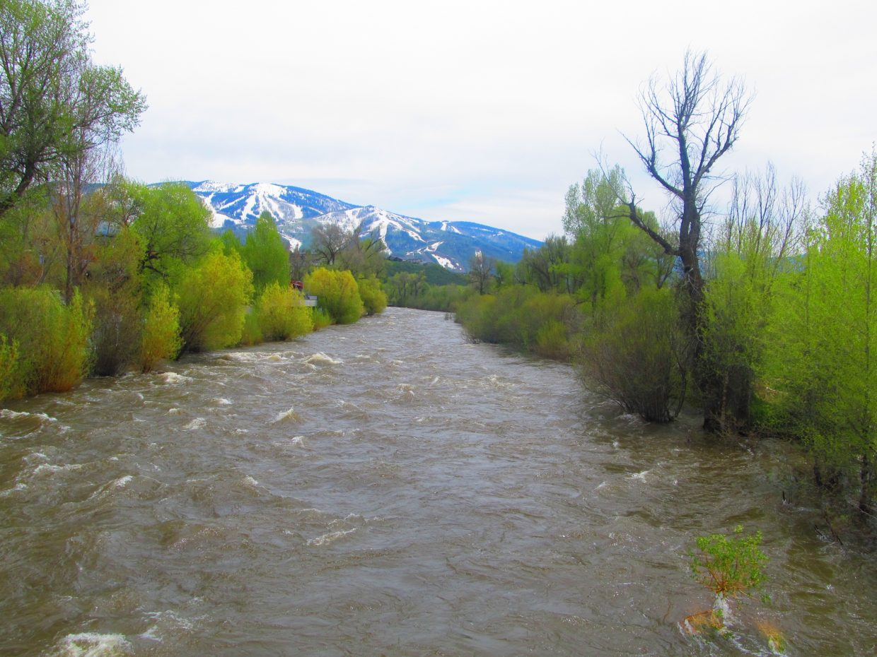 The Yampa River runs with Mount Werner in the background.