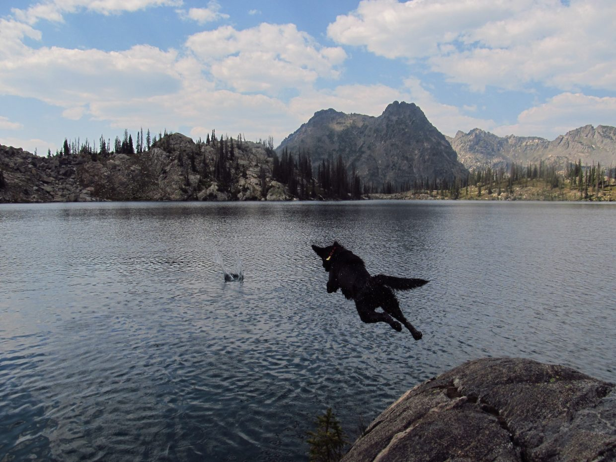 Theodore jumping off rock at Gilpin Lake. Submitted by: Adam Harwood