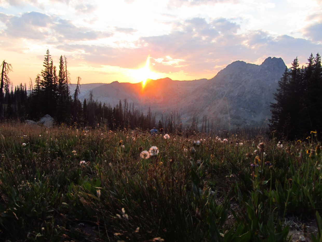 A grass view of the Zirkel sunset. Submitted by: Adam Harwood