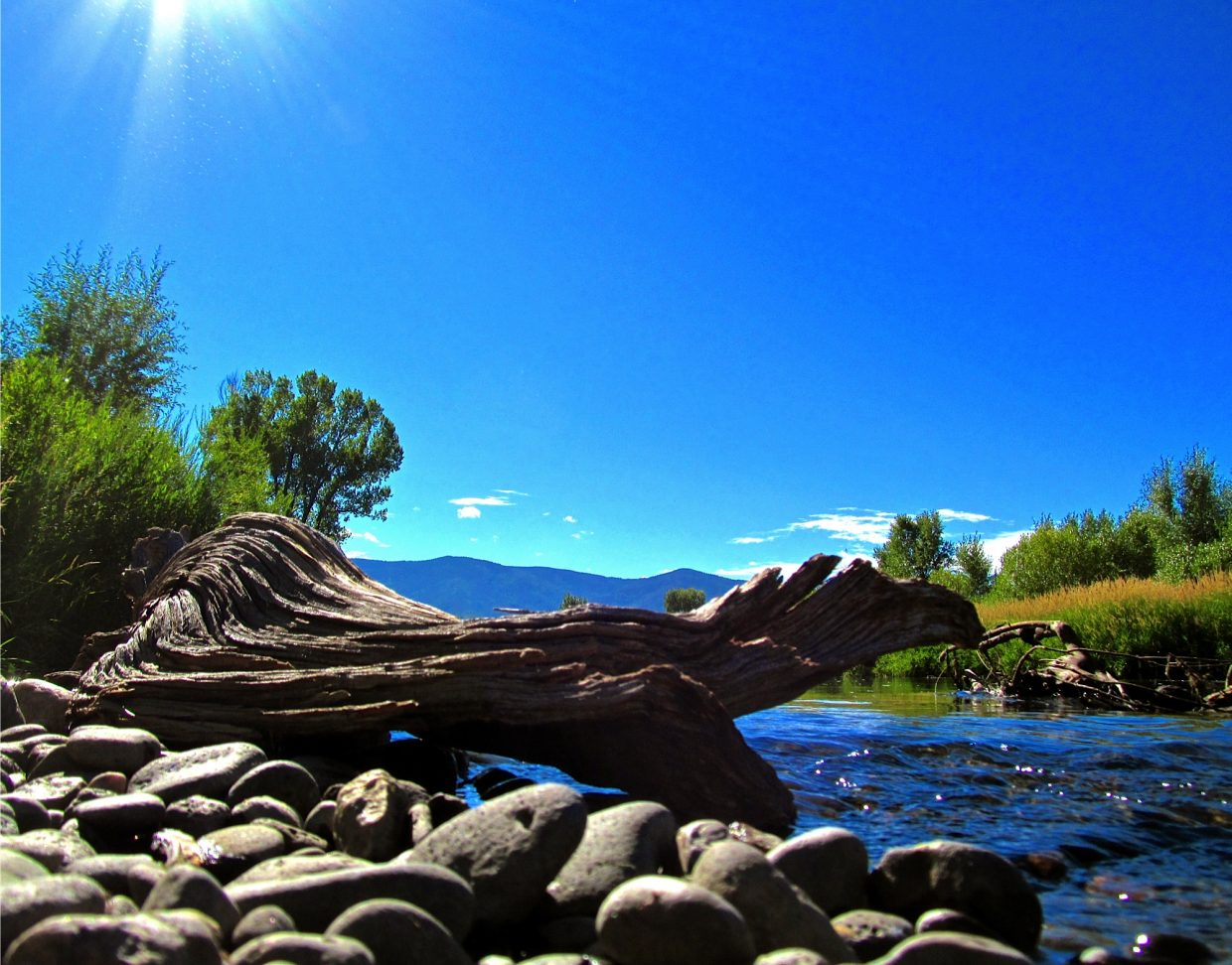 Morning on the Yampa. Submitted by: Ryan Lohan
