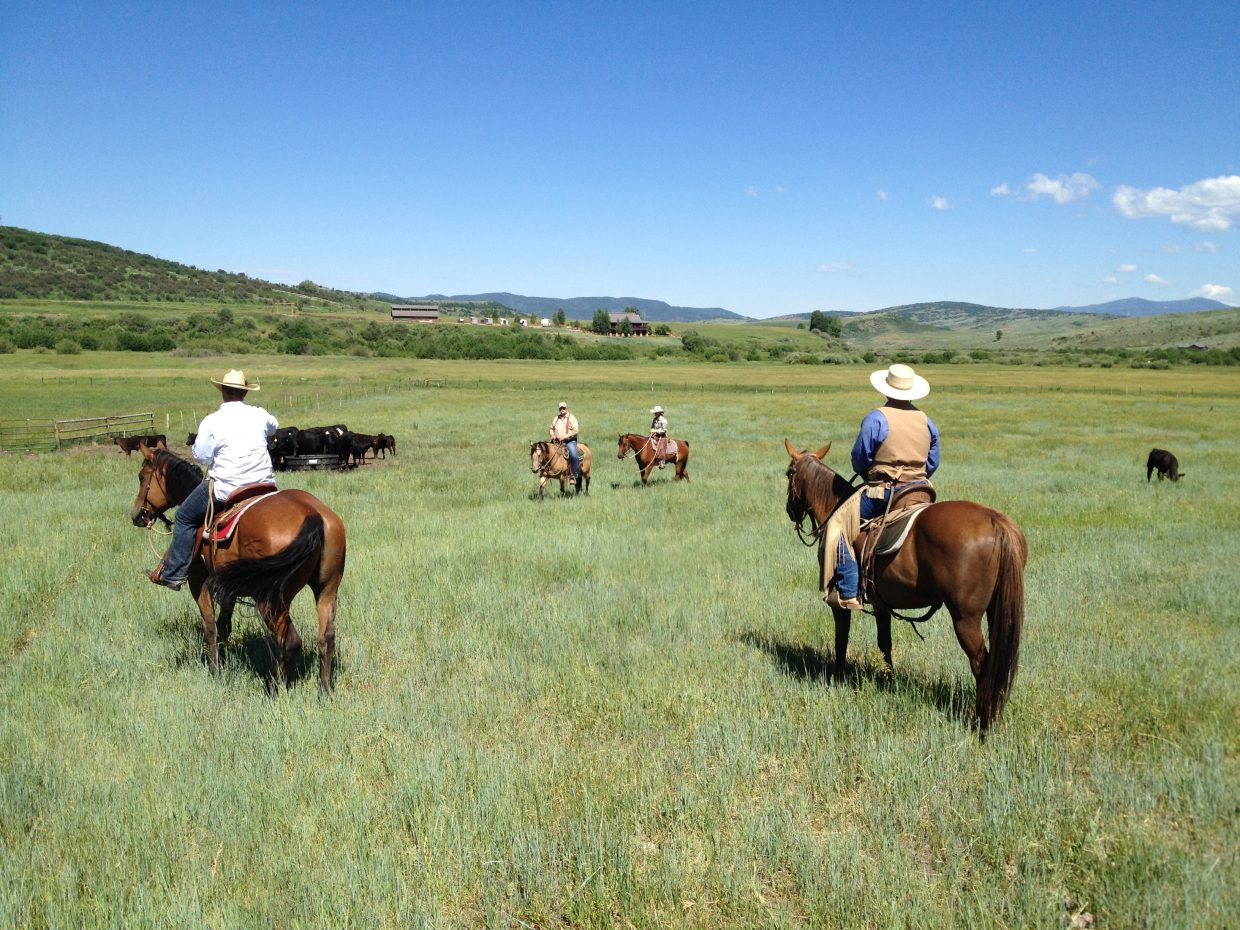 We had excellent participation in our Vaquero Cow Working Clinic down at Creek Ranch a couple of weeks ago. Our next Cow Working Clinic is Sept. 27 to 30. Submitted by: Aileen Sandstedt