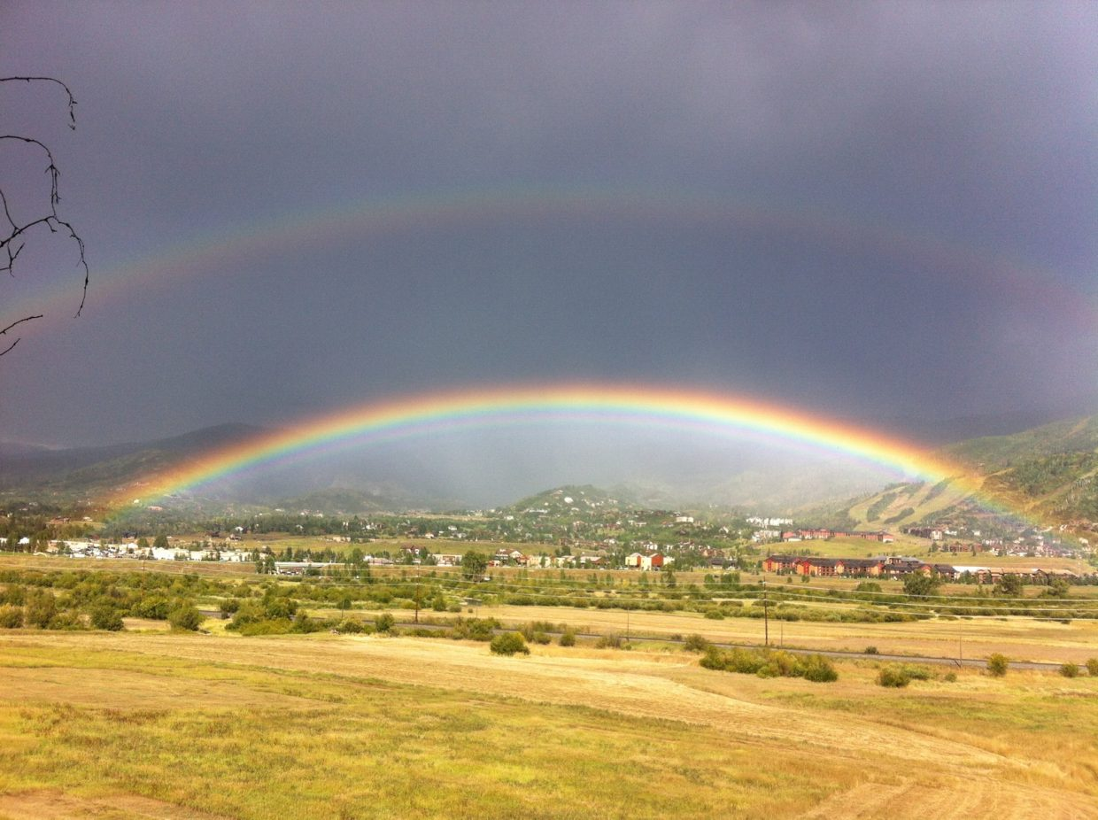 Photo taken from Tree Haus. Submitted by: Emilie Rogers