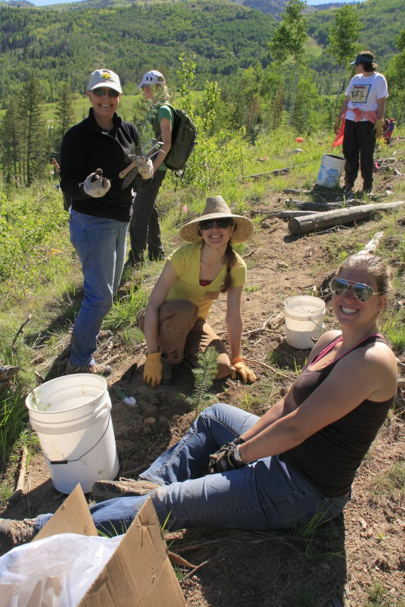 ReTree Steamboat, an annual tree-planting event hosted by the Yampa Valley Sustainability Council, welcomed 225 volunteers from across the state to plant 1,000 trees between Bashor and Vogue on Steamboat Ski Area on Sunday. Submitted by: Andy Kennedy