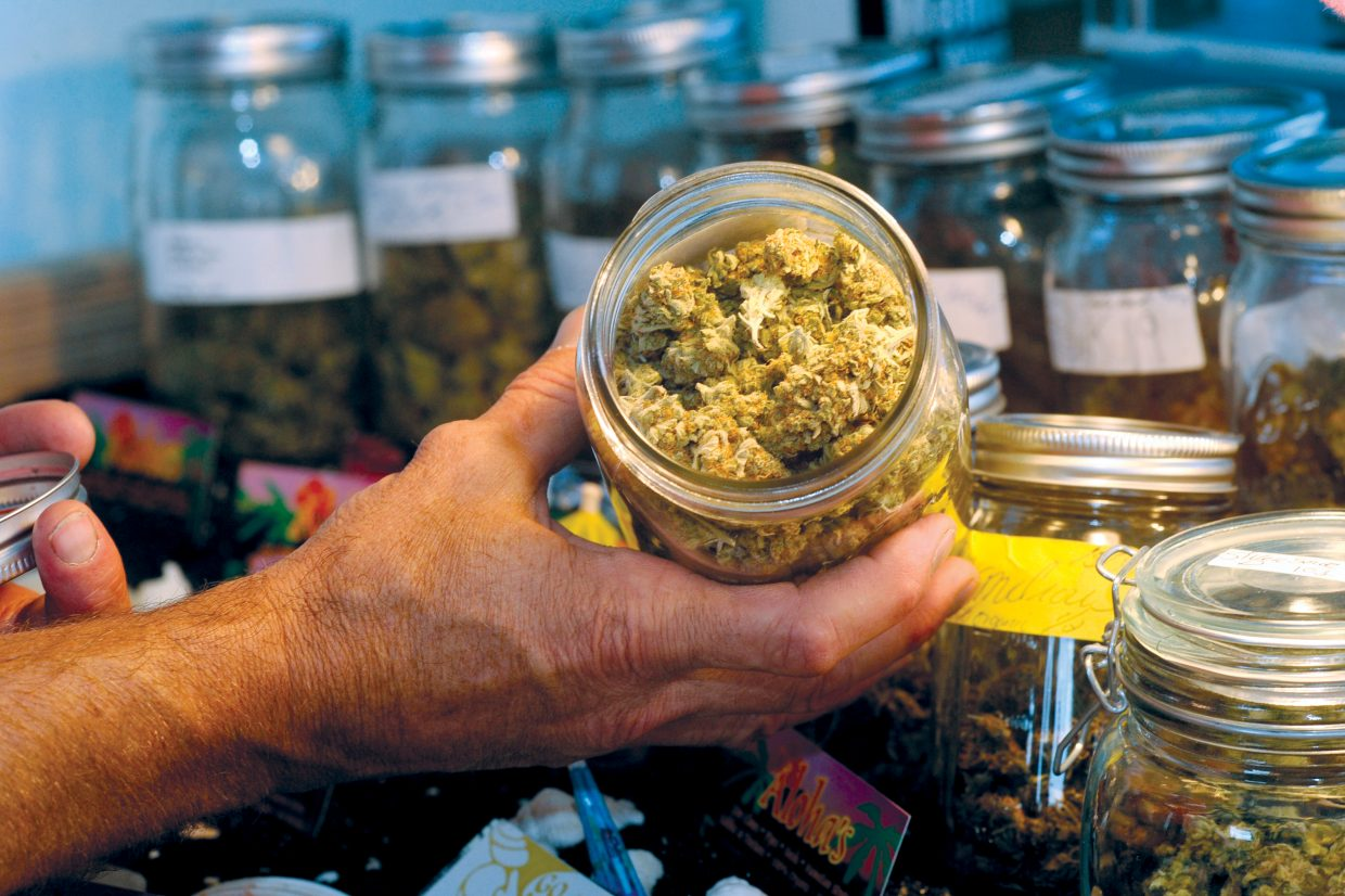 Chris Ward holds a jar of medical marijuana ready to be purchased by patients at Aloha's in Milner.